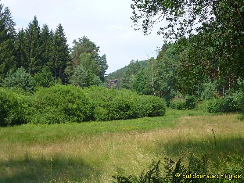 Im idyllischen Moosbachtal