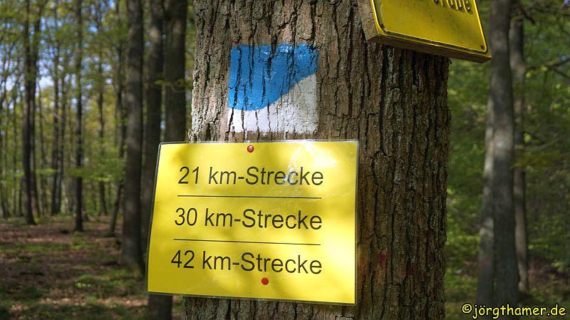 Wandermarathon Donnersberg
